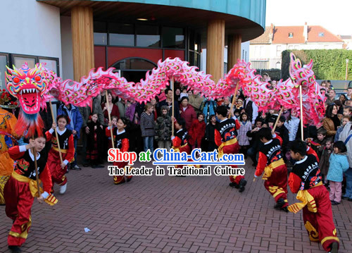 Supreme Business Opening Promotion and Celebration Luminous Phoenix Tail Dragon Dance Costume