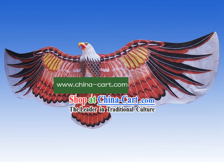 Super Large Chinese Weifang Hand Painted and Made Kite - Eagle