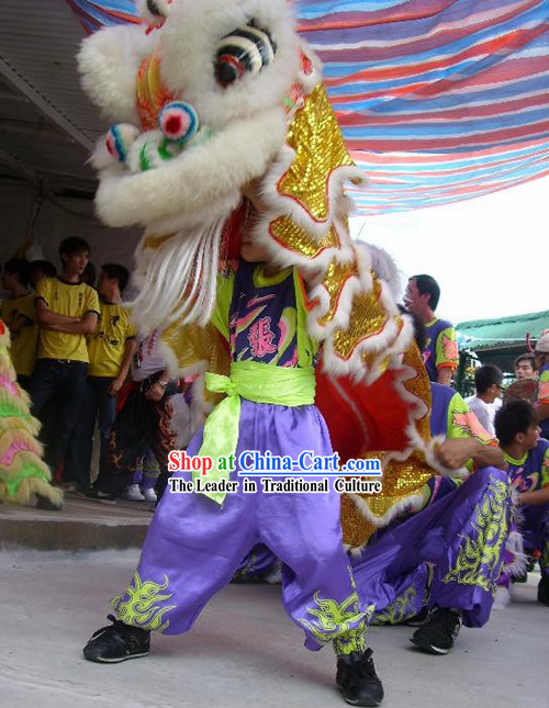 Happy Chinese New Year One Child Lion Dance Costume