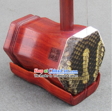 Top Chinese Violin Erhu
