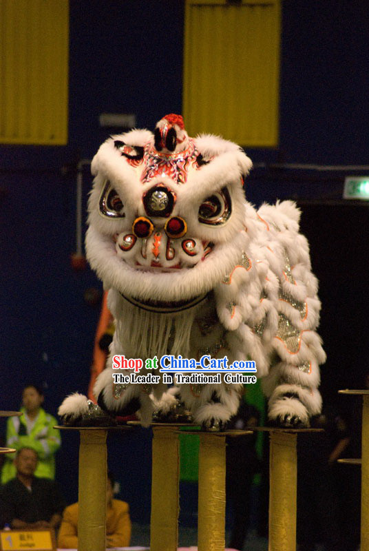 Gallery Display and Collection Lion Dance Equipment Complete Set