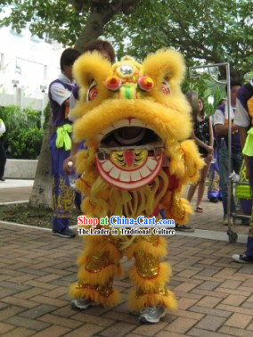 One Child Lion Dance Costume