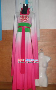 Chinese Water Sleeve Shui Xiu Dance Costumes