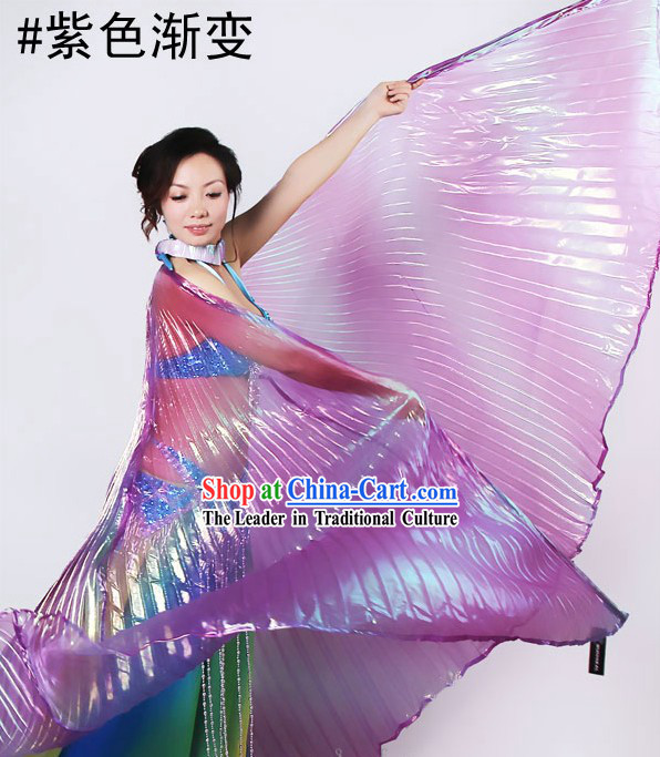 Large Purple Color Transition Dance Wings