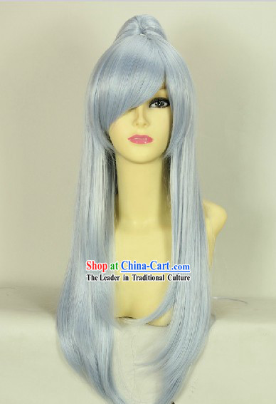 Ancient Chinese Style Long White Wig for Men