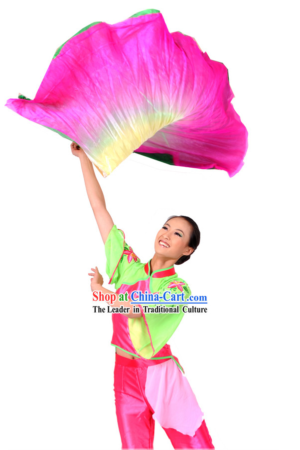 Chinese Classical Fan Dance Costume and Dance Fan for Women