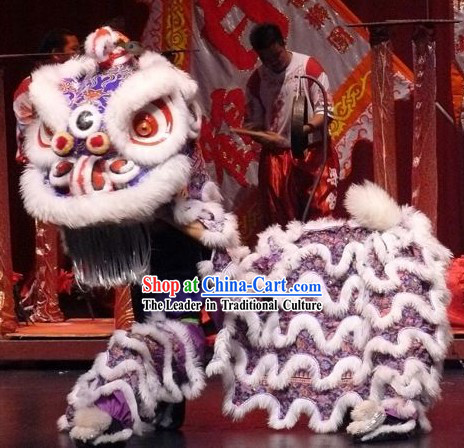 Great Parade and Festival Celebrations Lion Dance Costume Complete Set