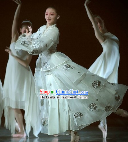 The Peony Pavilion Ballet Stage Performance Classical Costumes Complete Set for Women