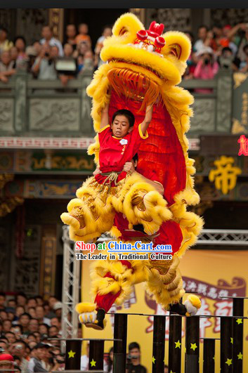 Teenagers Size Competition and Celebration Hoksan Lion Dance Costumes Complete Set
