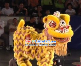 World Lion Dance Competition Hoksan Lion Head Adult Size Costumes Complete Set