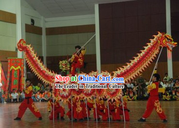 Top Professional Dragon Dance Costume for 9-10 People