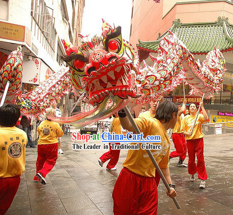 Southern Luminous Dragon Dance Costume for 9-10 People