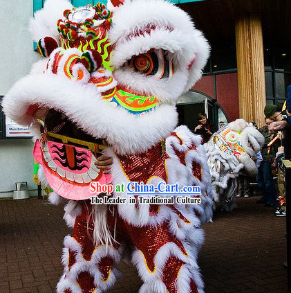 Luck Power Meaning Southern Futsan Lion Dance Costume Complete Set