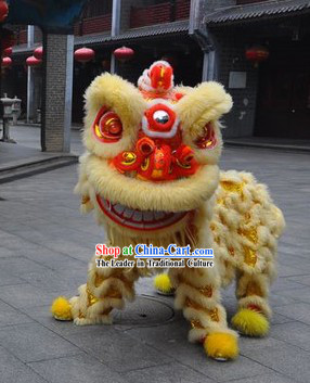 Top Professional Lion Dance Costume Complete Set for Two Men