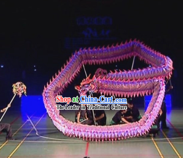 Contest Luminous Dragon Dancing Costume for Ten Youth