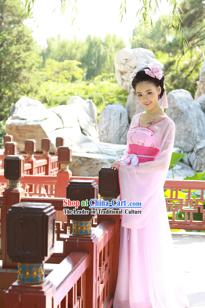 Ancient Chinese Pink Tang Dynasty Lady Costumes