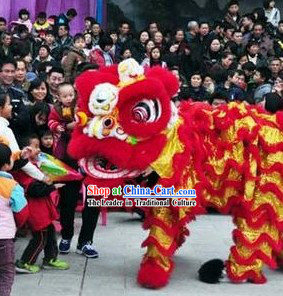 Red and Gold Competition and Performance Lion Dance Costumes Full Set
