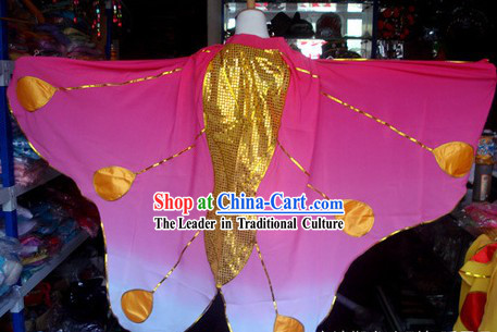 Liang Shanbo and Zhu Yingtai Butterfly Love Costumes