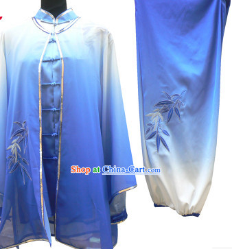 Color Transition Tai Chi Martial Arts Outfits and Cape for Women