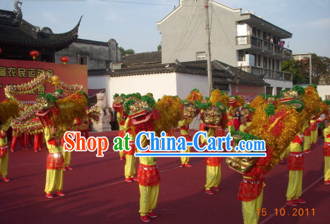Chinese New Year Parade Lion Costume for One Person