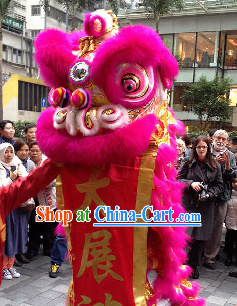 Chinese Festival Lion Mascot Costume Complete Set