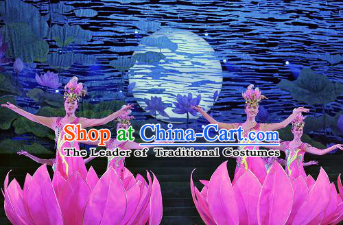 Chinese Folk Classical Flower Dance Costumes and Headwear Complete Set for Women