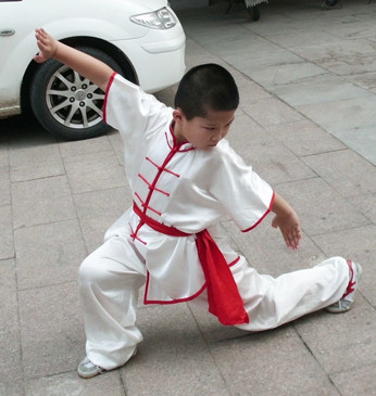 Supreme Kung Fu Uniform Hapkido Wooden Dummy Marshal Arts Aikido