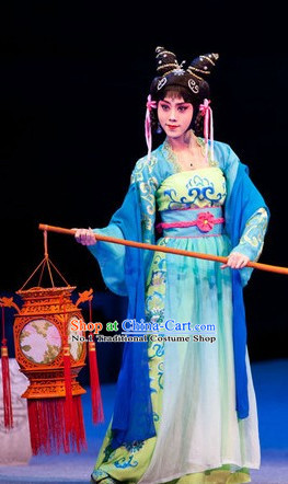 Chinese Stage Opera Hua Dan Costumes and Hair Jewelry for Women