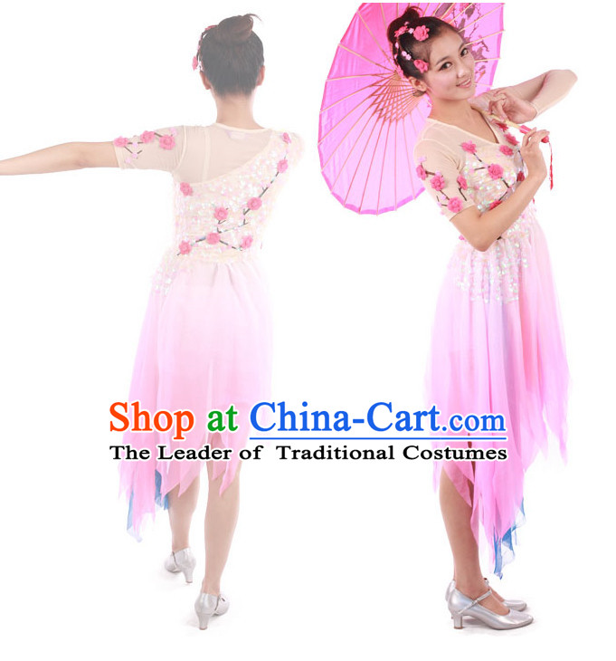 Chinese Teenagers Classic Dance Costumes for Competition