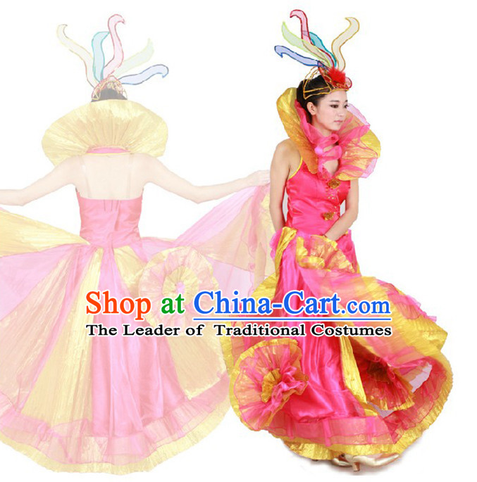 Chinese Teenagers Dance Costume and Hair Decorations for Competition