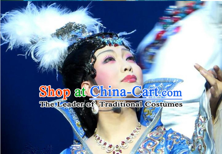 Chinese Wang Zhaojun Wigs and Hair Accessories.