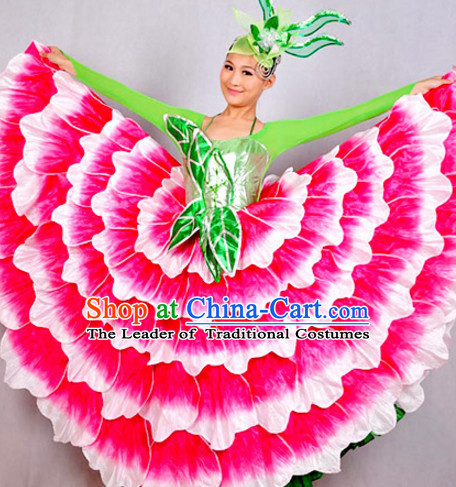 Chinese Classicial Flower Dancing Costumes Dancewear and Headpieces Complete Set for Women