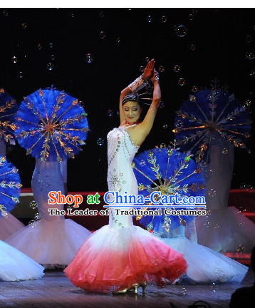 Chinese Traditional Snowflower Dance Costume Complete Set for Women or Gilrs