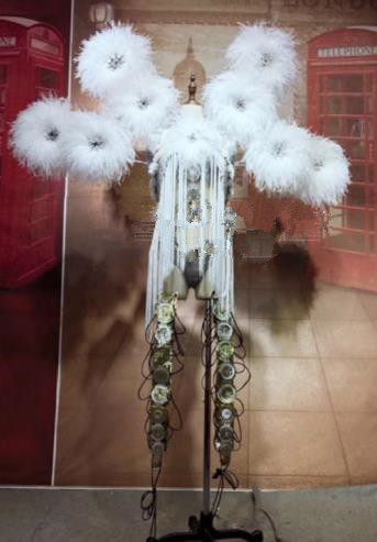 Parade Quality Feather Dance Costumes Popular Ostrich Feathers Fancy Bird