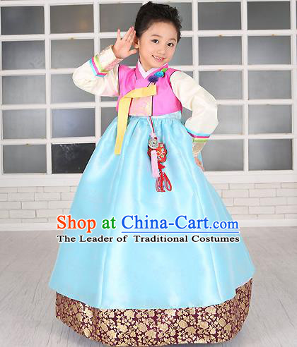 Traditional Korean Handmade Formal Occasions Costume Embroidered Baby Brithday Girls Pink Blouse and Blue Dress Hanbok Clothing
