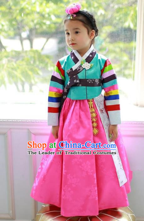 Traditional Korean Handmade Formal Occasions Costume Embroidered Baby Brithday Hanbok Green Blouse and Pink Dress Clothing for Girls