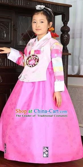 bc4599db36f Asian Korean Traditional Handmade Formal Occasions Costume Baby Princess  Embroidered Pink Blouse and Dress Hanbok Clothing for Girls