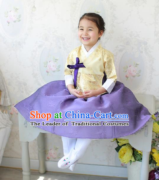 Asian Korean National Traditional Handmade Formal Occasions Costume, Palace Wedding Embroidered Purple Hanbok Clothing for Girls