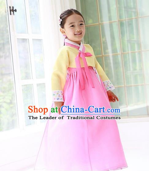 Traditional Korean Handmade Formal Occasions Costume Princess Yellow Embroidered Blouse and Pink Dress Hanbok Clothing for Girls