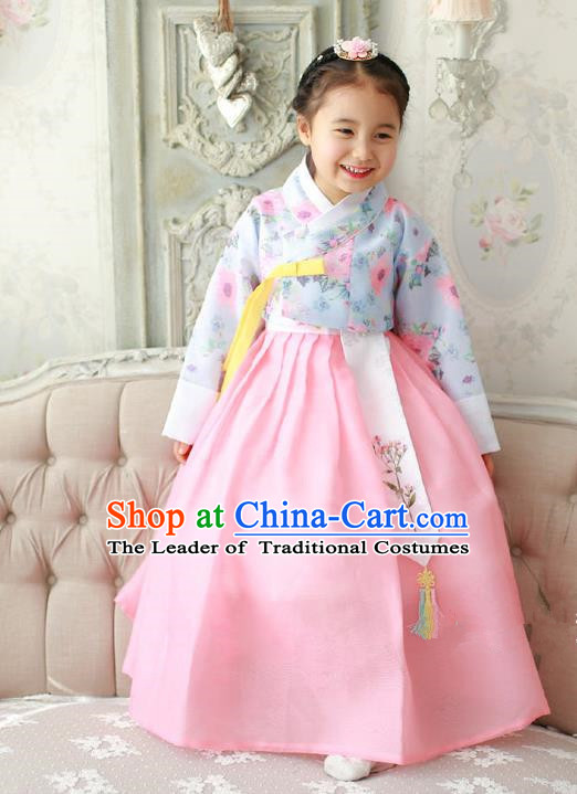 Asian Korean Traditional Handmade Formal Occasions Costume Princess Embroidered Blue Blouse and Pink Dress Hanbok Clothing for Girls