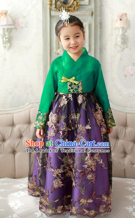 Asian Korean Traditional Handmade Formal Occasions Girls Embroidered Green Blouse and Purple Dress Costume Hanbok Clothing for Kids