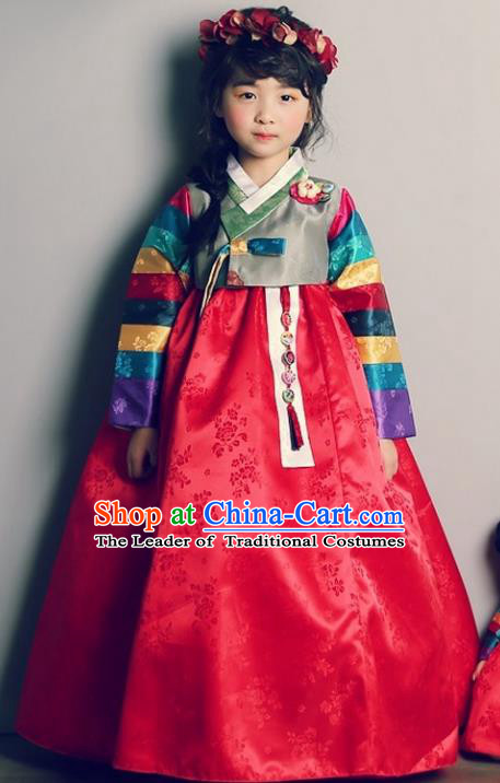Asian Korean Traditional Handmade Formal Occasions Girls Embroidered Blouse and Red Dress Costume Hanbok Clothing for Kids