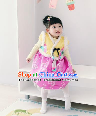 Asian Korean National Traditional Handmade Formal Occasions Girls Embroidery Hanbok Costume Yellow Vest and Pink Dress Complete Set for Kids