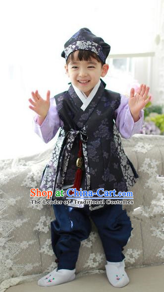 Asian Korean National Traditional Handmade Formal Occasions Boys Embroidery Purple Hanbok Costume Complete Set for Kids