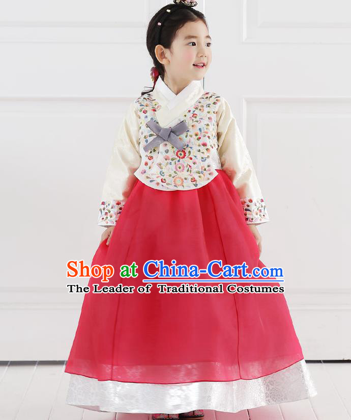 Asian Korean National Handmade Formal Occasions Embroidered Blouse and Red Dress Hanbok Costume for Kids