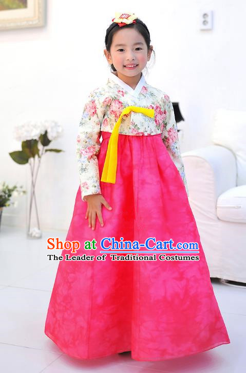 Asian Korean National Handmade Formal Occasions Wedding Embroidered Printing Blouse and Pink Dress Traditional Palace Hanbok Costume for Kids