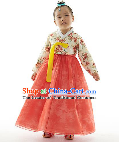 Asian Korean National Handmade Formal Occasions Printing Blouse and Pink Dress Palace Hanbok Costume for Kids