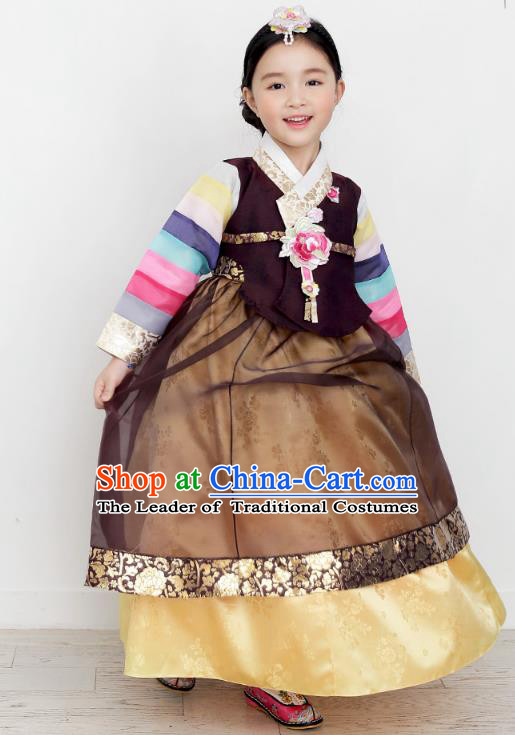 Asian Korean National Handmade Formal Occasions Wedding Clothing Purple Blouse and Brown Dress Palace Hanbok Costume for Kids