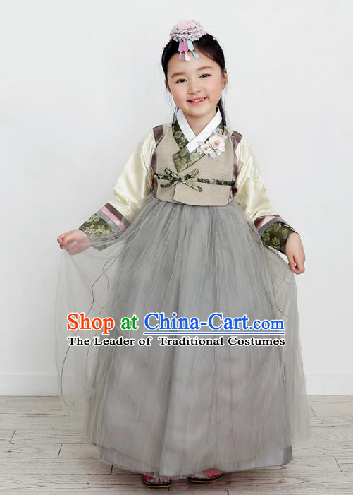 Asian Korean National Handmade Formal Occasions Wedding Clothing Grey Blouse and Dress Palace Hanbok Costume for Kids