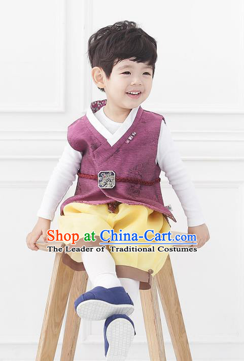 Asian Korean National Traditional Handmade Formal Occasions Boys Embroidery Wine Red Vest Hanbok Costume Complete Set for Kids